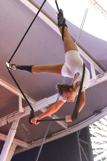 V&A Waterfront Zip Zap Circus performances