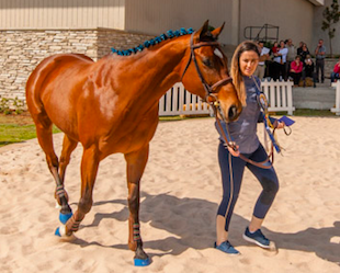Kyalami Corner's Horse of the Season 2018