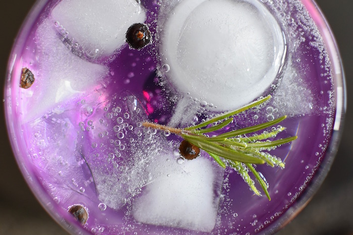 BIRCHWOOD HOTEL AND GIN PASSPORT SA HOSTS BIGGEST CRAFT GIN FESTIVAL IN THE COUNTRY